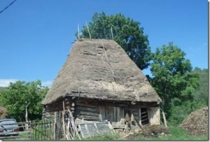 Romania - thatched house 2