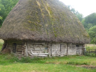 Romania - thatched house