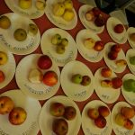Apple Day 2014 - apples